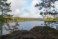 Paisaje en un lago del bosque Foto de archivo libre de regalías