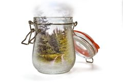 Paisaje en un tarro de cristal Foto de archivo