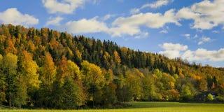 Paisaje en valle y hogar del bosque del otoño. Imagenes de archivo