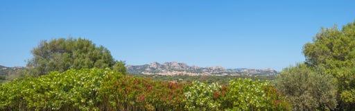 Paisaje escénico de colinas verdes y de montañas rocosas de la isla de Cerdeña foto de archivo libre de regalías