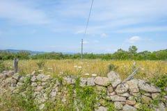 Paisaje escénico de colinas verdes y de montañas rocosas de la isla de Cerdeña fotografía de archivo libre de regalías