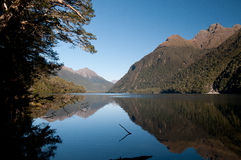 Paisaje escénico de Nueva Zelanda Imágenes de archivo libres de regalías