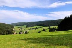 Paisaje escénico del campo en el bosque negro: valle verde de la montaña del verano con los bosques, los campos y las casas vieja Fotos de archivo
