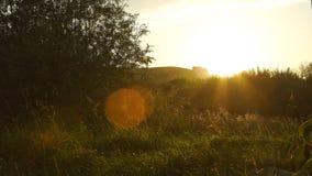Paisaje escénico del país en puesta del sol en Rusia almacen de video