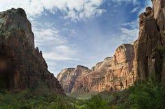Paisaje escénico en el parque nacional de Zion, Utah, los E.E.U.U. fotografía de archivo libre de regalías