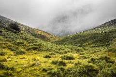 Paisaje escénico en las montañas en verano, país basque, Francia de Iraty imágenes de archivo libres de regalías