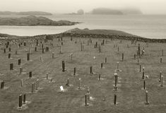 Paisaje escocés con el cementerio y la costa costa escocia Reino Unido Foto de archivo