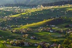 Paisaje eslovaco de la primavera con los cerezos Imagen de archivo libre de regalías