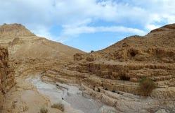 Lecho de un río seco seco del desierto. fotografía de archivo libre de regalías