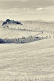 Paisaje estilizado de la casa vieja arruinada en las colinas de Tusca Fotos de archivo libres de regalías