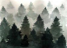 Paisaje exhausto de la acuarela de la mano del bosque misterioso de las piceas del bosque de niebla en la niebla imagen de archivo libre de regalías
