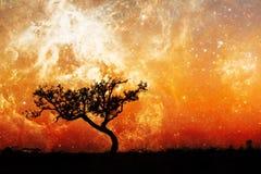 Paisaje extranjero de la fantasía con el árbol solitario Imagenes de archivo