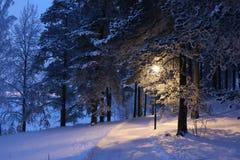 Paisaje fabuloso del invierno Imagenes de archivo