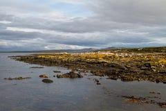 Paisaje Falkland Islands Imagen de archivo