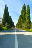 Paisaje famoso del bulevar del árbol de cipreses de Bolgheri. Señal de Toscana, Italia Imagen de archivo libre de regalías
