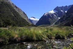 Paisaje famoso, parque nacional del fiordland Imagen de archivo