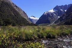 Paisaje famoso, parque nacional del fiordland Foto de archivo