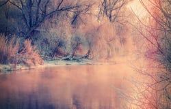 Paisaje fantástico del invierno Imagen de archivo libre de regalías