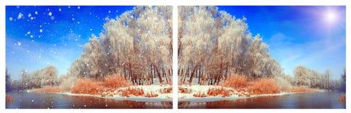 Paisaje fantástico del invierno Fotografía de archivo