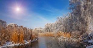 Paisaje fantástico del invierno Imagenes de archivo