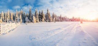 Paisaje fantástico del invierno, camino, algo que lleva en las montañas Día soleado escarchado en las montañas En imagen de archivo libre de regalías