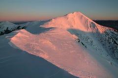 Paisaje fantástico del invierno de la tarde y de la mañana Cielo cubierto colorido Árbol nevado mágico del mundo de la belleza imagen de archivo libre de regalías