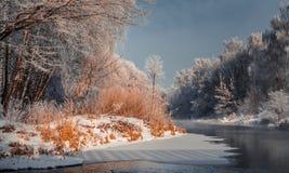 Paisaje fascinador del invierno Fotografía de archivo