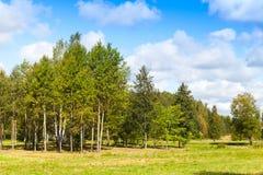 Paisaje finlandés rural en día de verano Fotografía de archivo