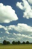 Paisaje francés del cielo del verano del campo con los árboles fotografía de archivo libre de regalías