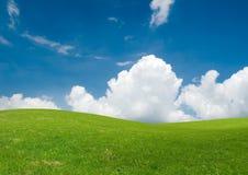 Paisaje fresco del verano imagen de archivo libre de regalías