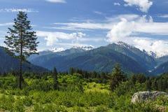 Paisaje georgiano de la naturaleza en la región de Svaneti, Georgia Las colinas hermosas cubrieron la hierba, montañas, prado ver fotografía de archivo