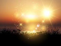 Paisaje herboso de la puesta del sol Fotos de archivo
