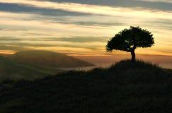 Paisaje hermoso Foto de archivo libre de regalías