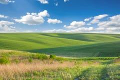 Paisaje hermoso Campo verde claro debajo de un cielo con las nubes Imagen de archivo