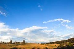 Paisaje hermoso claro del campo de hierba del cielo azul Fotos de archivo