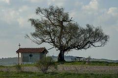 Paisaje hermoso con el árbol de abedul venerable de la primavera y la capilla vieja, situados en la montaña de Plana Fotografía de archivo