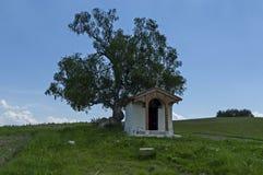 Paisaje hermoso con el árbol de abedul venerable del verano y la capilla vieja, situados en la montaña de Plana Fotografía de archivo