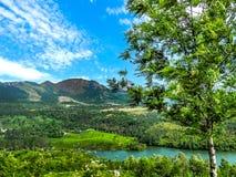 Paisaje hermoso con el bosque y el río salvajes de Periyar, Kerala, la India Fotografía de archivo libre de regalías