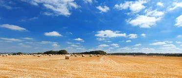 Paisaje hermoso con el campo y el cielo del centeno Fotografía de archivo