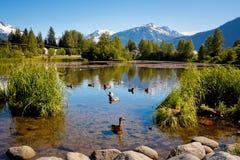 Paisaje hermoso con el lago alaska Imagen de archivo libre de regalías