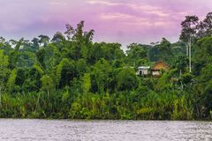 Paisaje hermoso con el río, la selva y las chozas debajo del cielo púrpura fotos de archivo libres de regalías