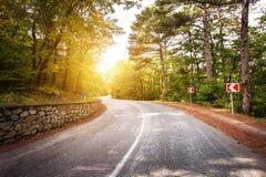 Paisaje hermoso con la carretera de asfalto, el bosque verde y la señal de tráfico en la salida del sol colorida en verano Montañ Foto de archivo