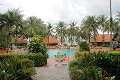 Paisaje hermoso con la piscina y los ?rboles de coco alrededor foto de archivo libre de regalías