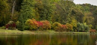 Paisaje hermoso con niebla sobre el lago, reflexión brillante del otoño de los árboles en agua, Foto de archivo libre de regalías