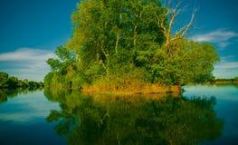 Paisaje hermoso con vistas del lago del bosque Imagen de archivo