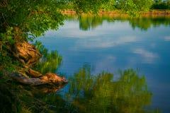 Paisaje hermoso con vistas del lago del bosque Foto de archivo libre de regalías