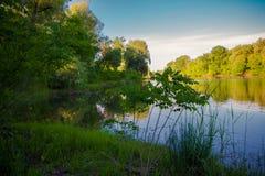 Paisaje hermoso con vistas del lago del bosque Fotos de archivo