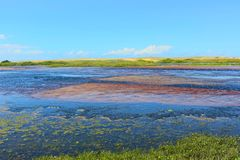 Paisaje hermoso de Barra de Punaú, donde las aguas del río de Punaú resuelve el mar/el natal, el Brasil Fotografía de archivo