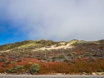 Paisaje hermoso de la costa costa pacífica, Big Sur Foto de archivo libre de regalías