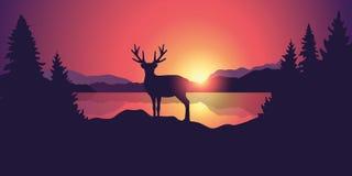 Paisaje hermoso de la fauna con las montañas y el bosque del lago del reno en la puesta del sol libre illustration